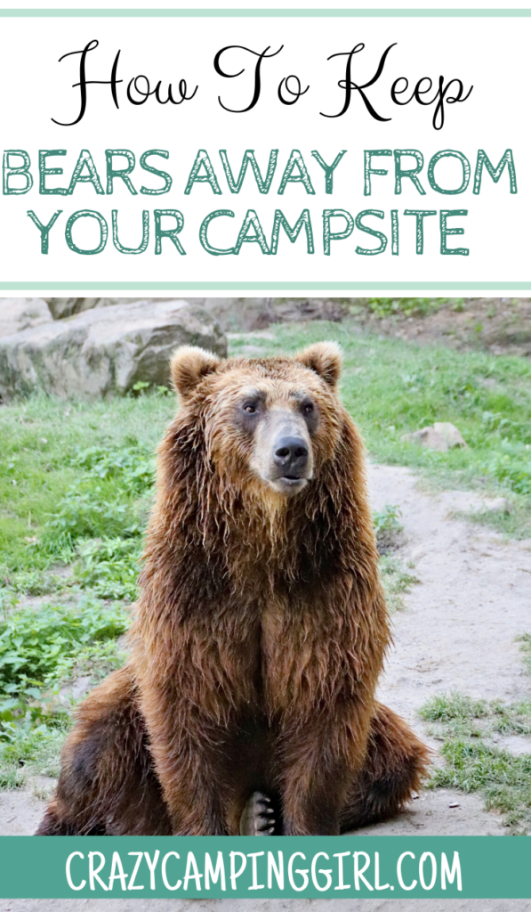 How to Keep Bears Away From Your Campsite