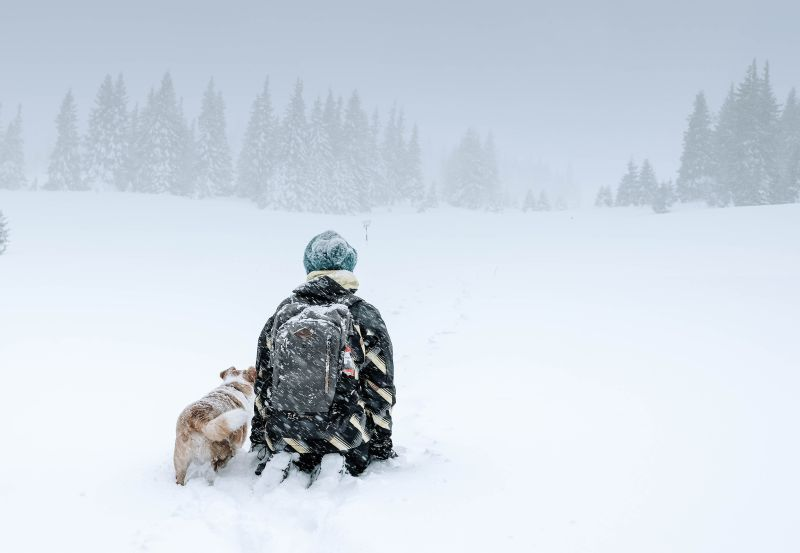 winter camping hacks trying to stay warm man and his dog in a blizzard