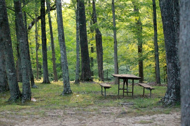 perrot state park picnic table
