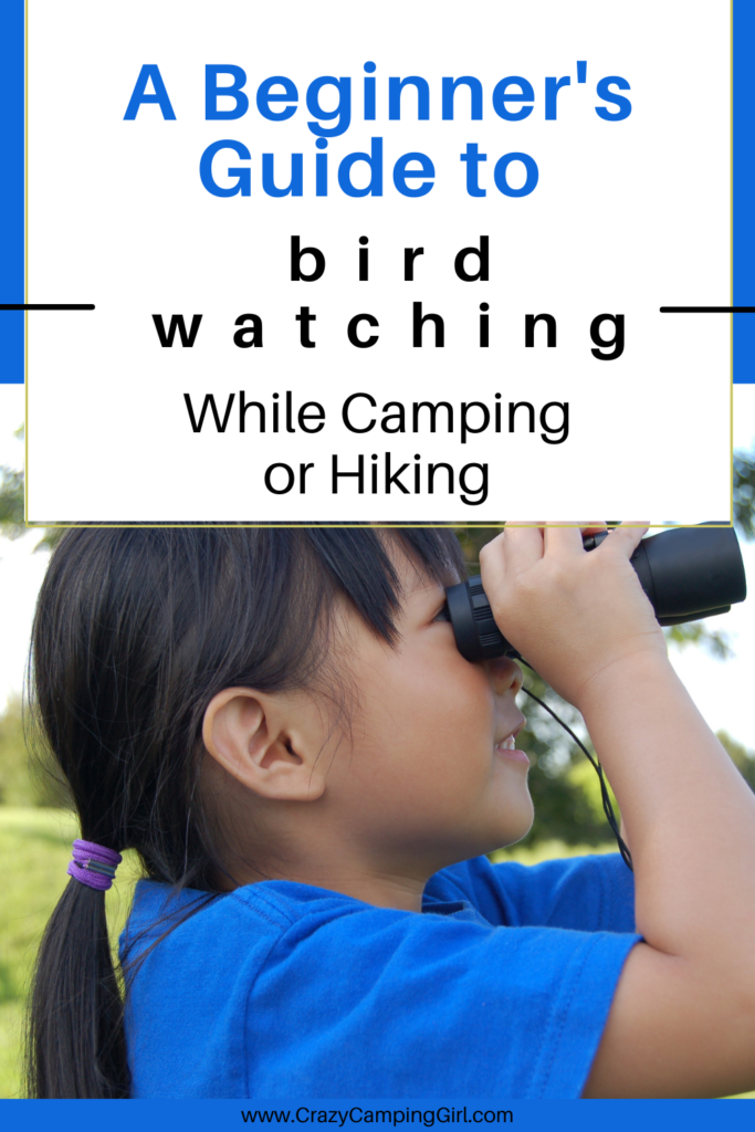 A Beginner's Guide to Bird Watching While Camping or Hiking