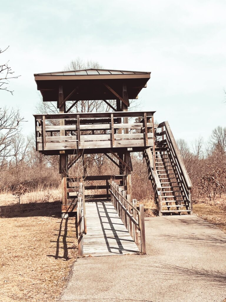 Hiking and walking trails at Buckhorn State Park tower